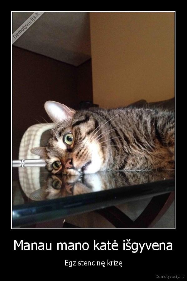 Manau mano kate isgyvena Egzistencine krize