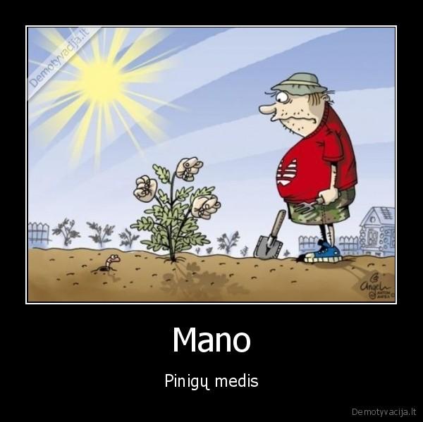 Mano Pinigu medis