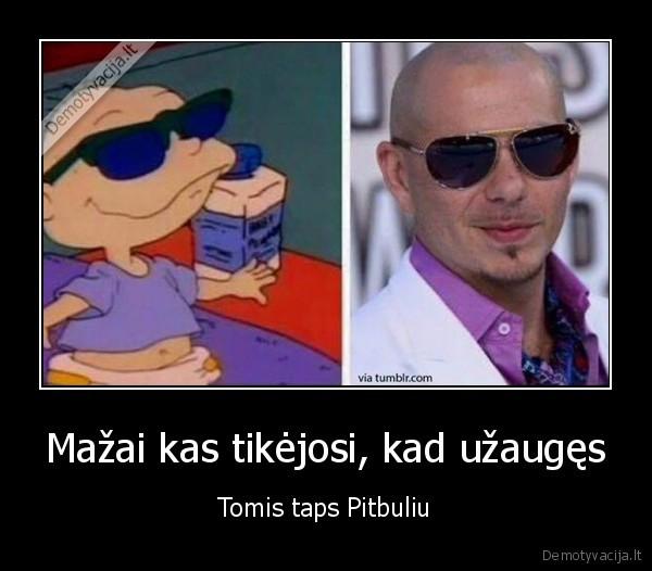 Mazai kas tikejosi kad uzauges Tomis taps Pitbuliu