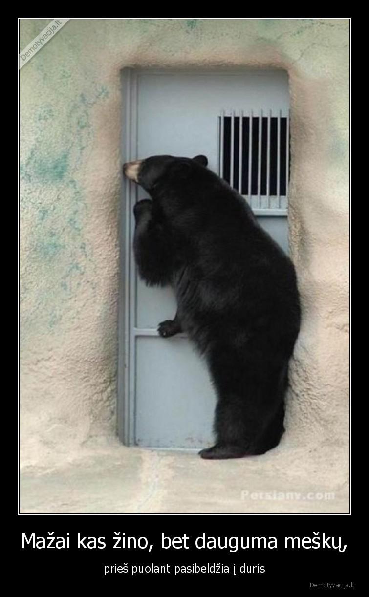 Mazai kas zino bet dauguma mesku pries puolant pasibeldzia i duris
