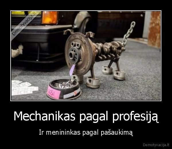 Mechanikas pagal profesija Ir menininkas pagal pasaukima