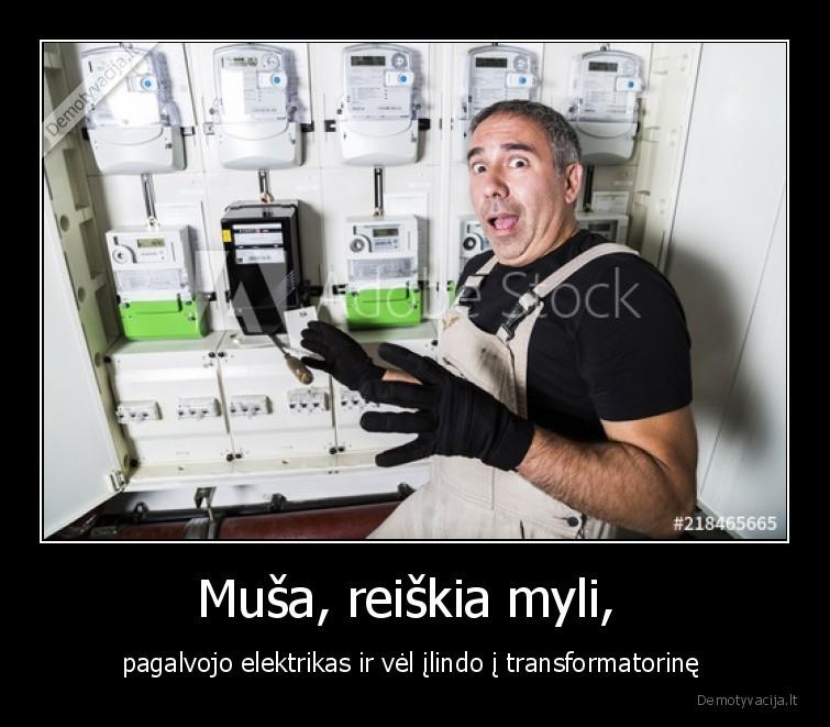 Musa reiskia myli pagalvojo elektrikas ir vel ilindo i transformatorine