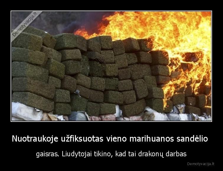 Nuotraukoje uzfiksuotas vieno marihuanos sandelio gaisras. Liudytojai tikino kad tai drakonu darbas