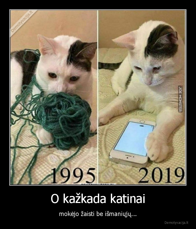 O kazkada katinai mokejo zaisti be ismaniuju