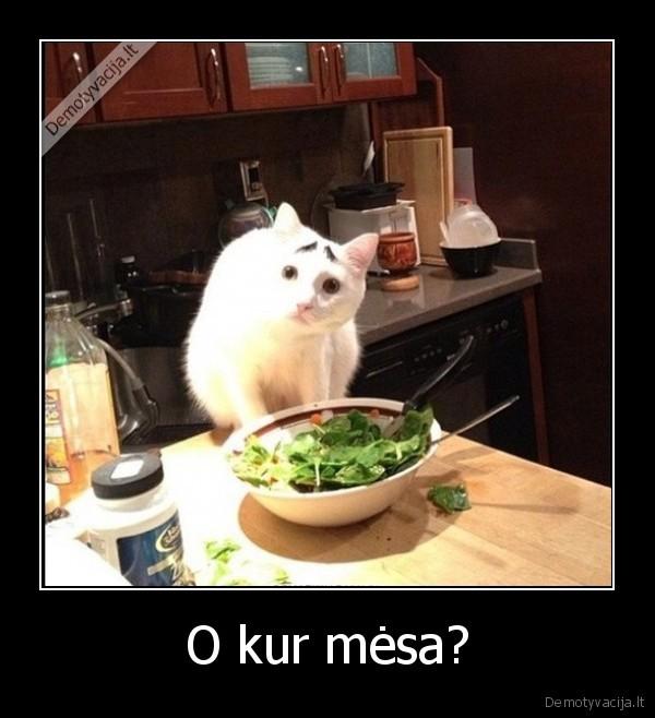 O kur mėsa?..