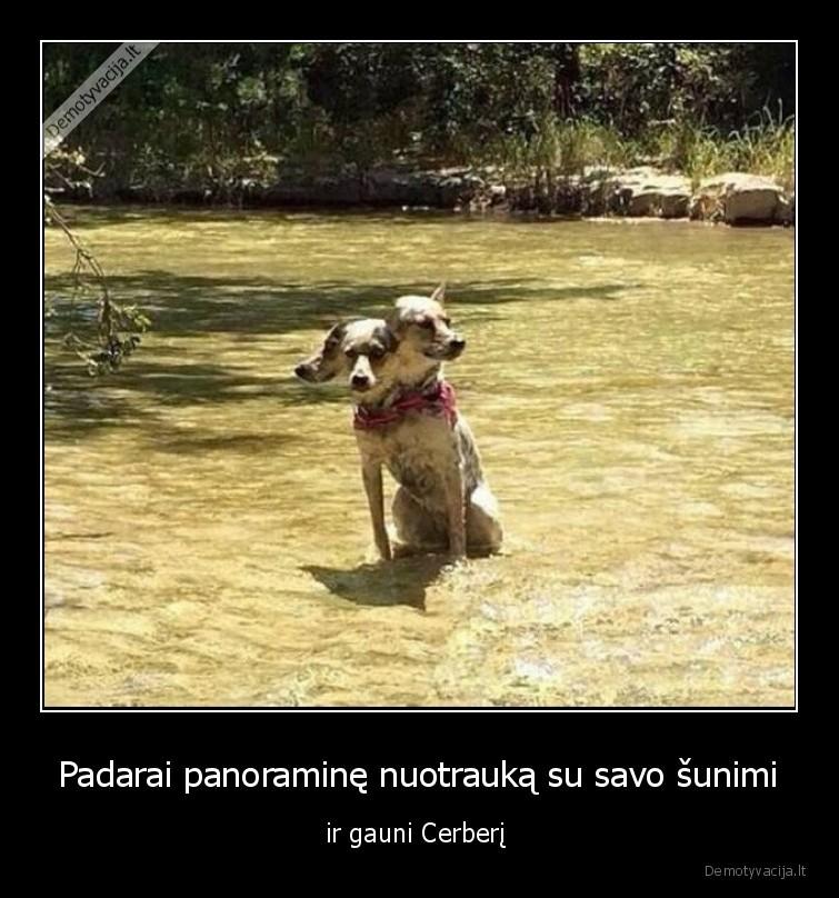 Padarai panoramine nuotrauka su savo sunimi ir gauni Cerberi