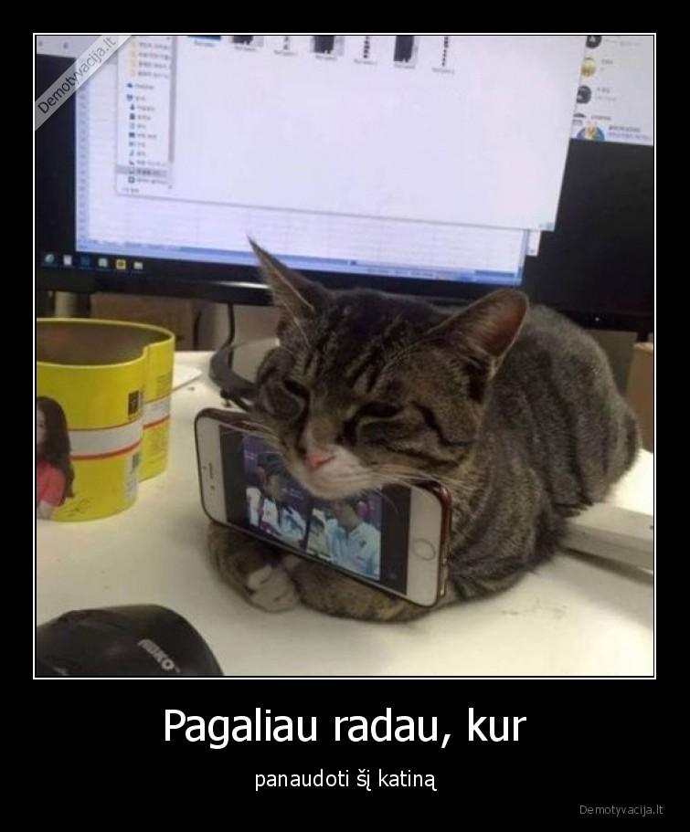 Pagaliau radau kur panaudoti si katina