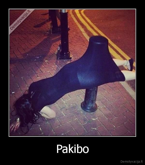 Pakibo