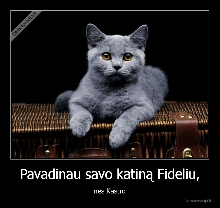 Pavadinau savo katina Fideliu nes Kastro