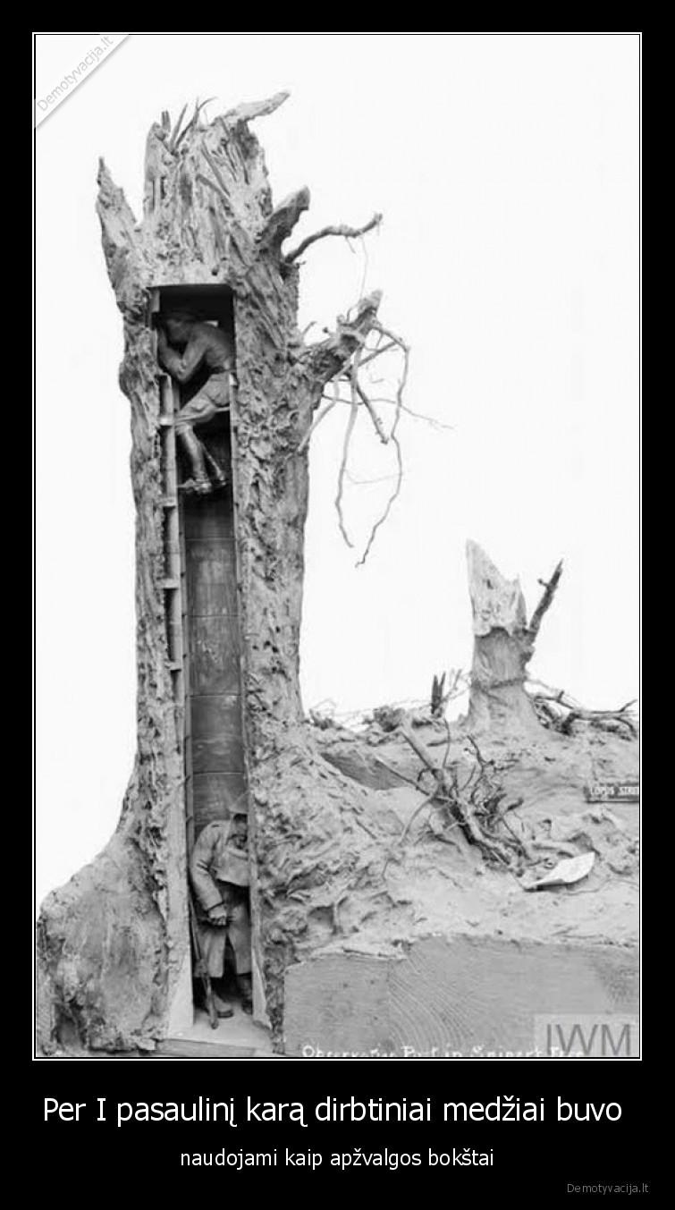 Per I pasaulini kara dirbtiniai medziai buvo naudojami kaip apzvalgos bokstai