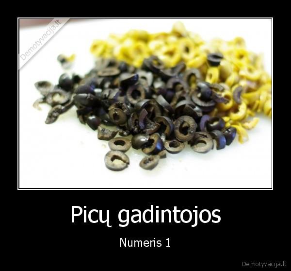 Picu gadintojos Numeris 1