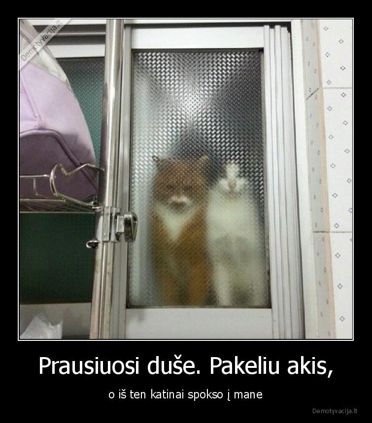 Prausiuosi duse. Pakeliu akis o is ten katinai spokso i mane
