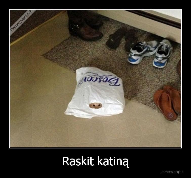 Raskit katina