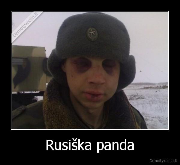 Rusiska panda