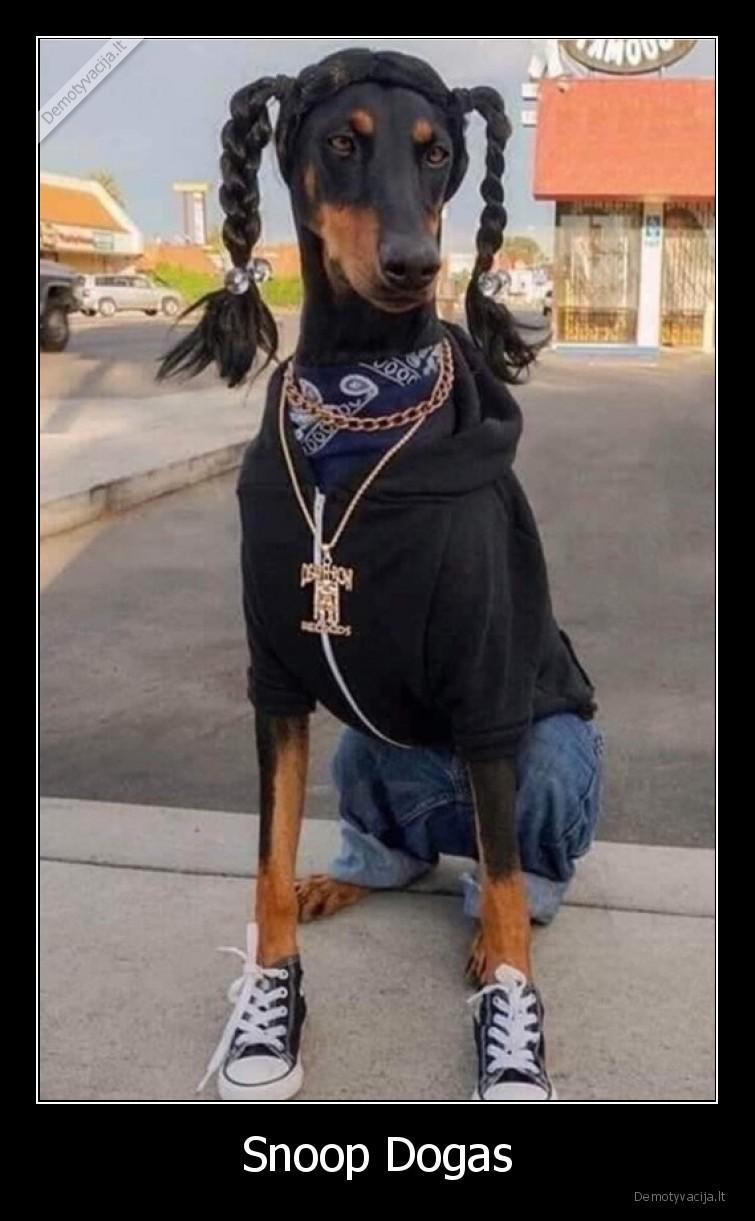Snoop Dogas