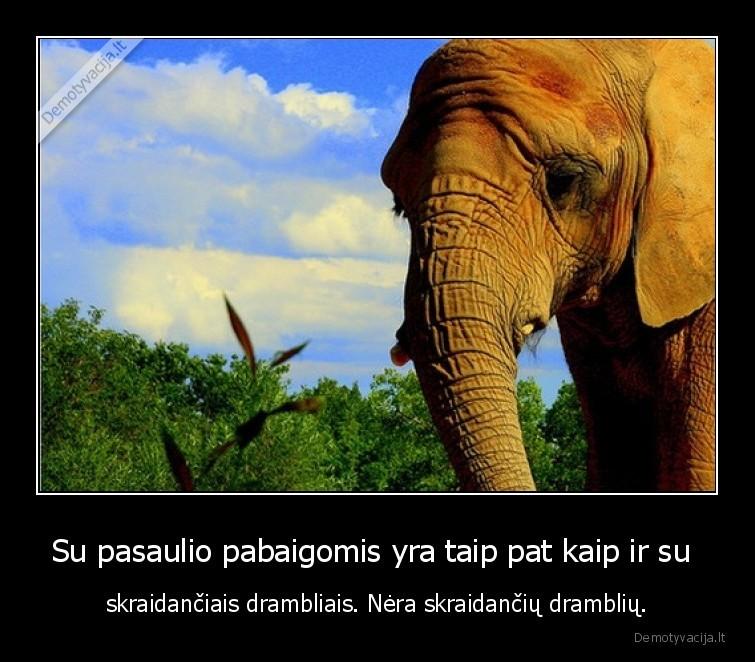 Su pasaulio pabaigomis yra taip pat kaip ir su skraidanciais drambliais. Nera skraidanciu drambliu