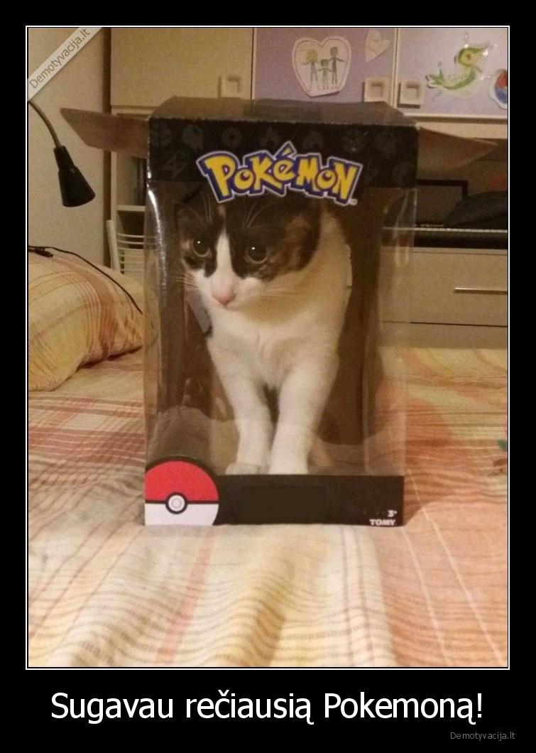 Sugavau reciausia Pokemona