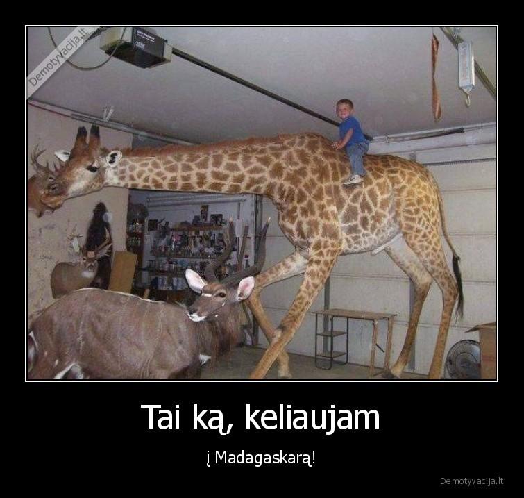 Tai ka keliaujam i Madagaskara