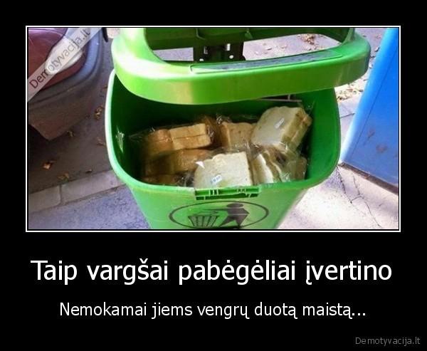 Taip vargsai pabegeliai ivertino Nemokamai jiems vengru duota maista