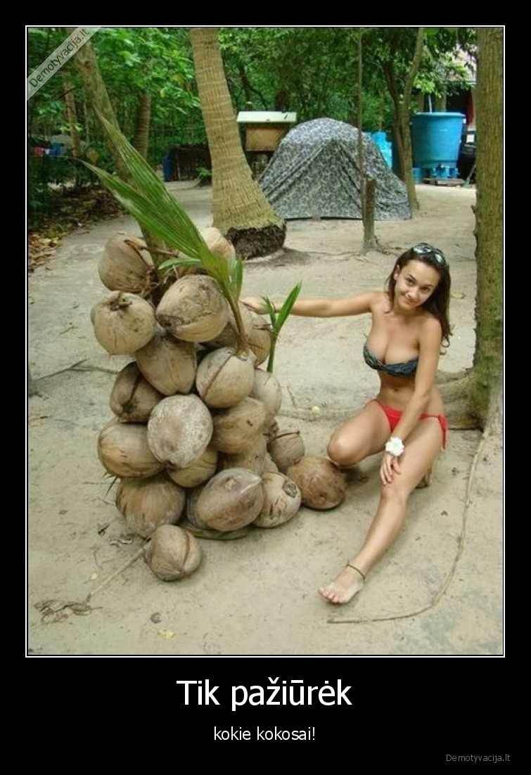 Tik paziurek kokie kokosai