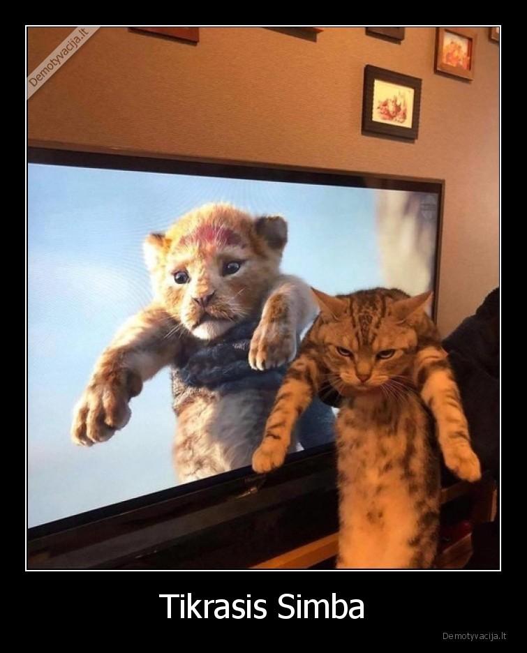 Tikrasis Simba