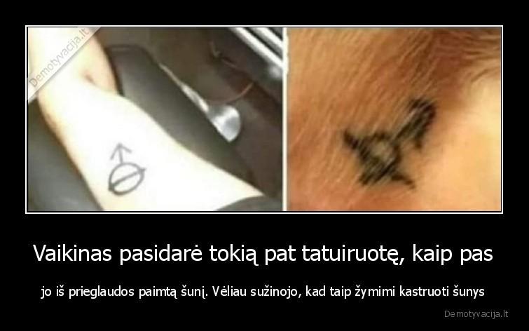 Vaikinas pasidare tokia pat tatuiruote kaip pas jo is prieglaudos paimta suni. Veliau suzinojo kad taip zymimi kastruoti sunys