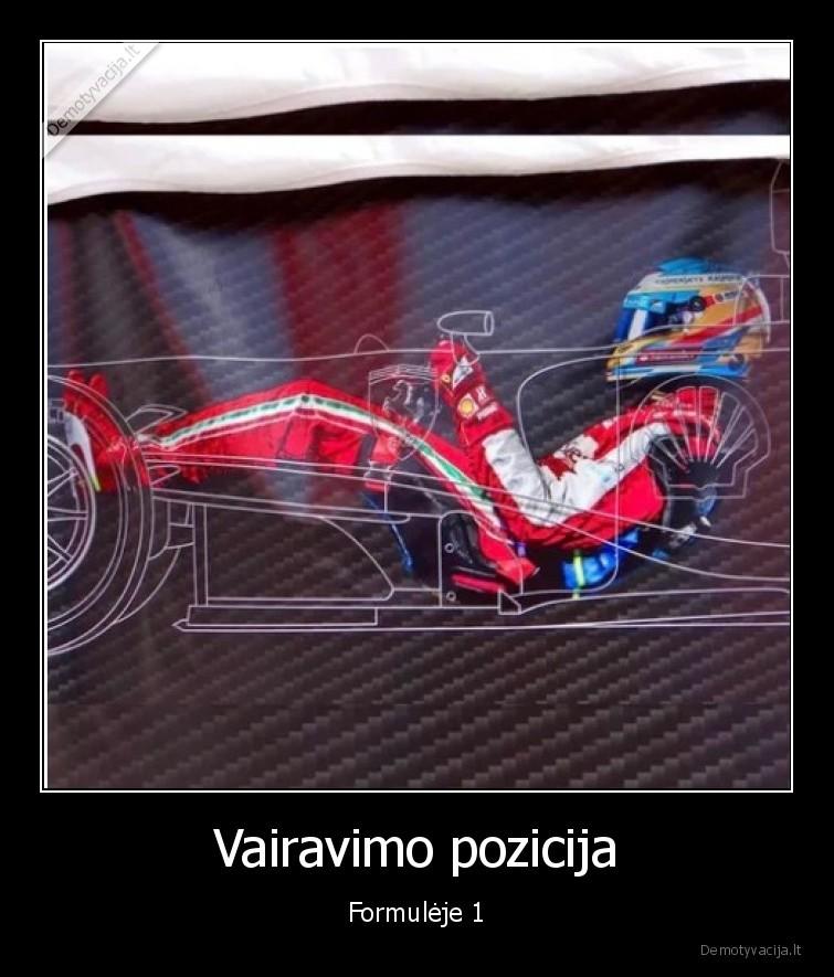 Vairavimo pozicija Formuleje 1