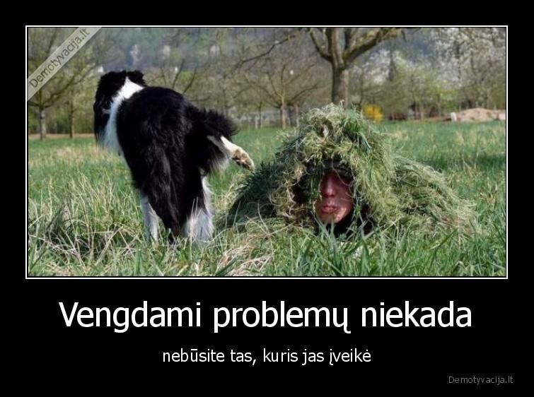Vengdami problemu niekada nebusite tas kuris jas iveike