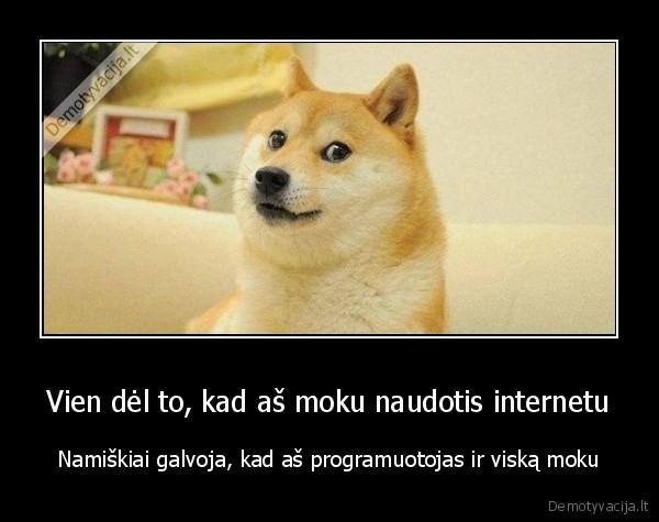 Vien del to kad as moku naudotis internetu Namiskiai galvoja kad as programuotojas ir viska moku