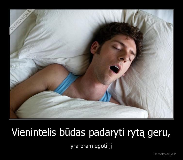Vienintelis budas padaryti ryta geru yra pramiegoti ji
