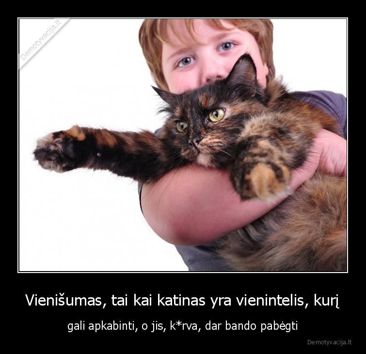 Vienisumas tai kai katinas yra vienintelis kuri gali apkabinti o jis krva dar bando pabegti