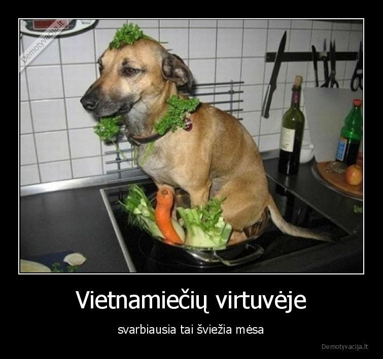 Vietnamieciu virtuveje svarbiausia tai sviezia mesa