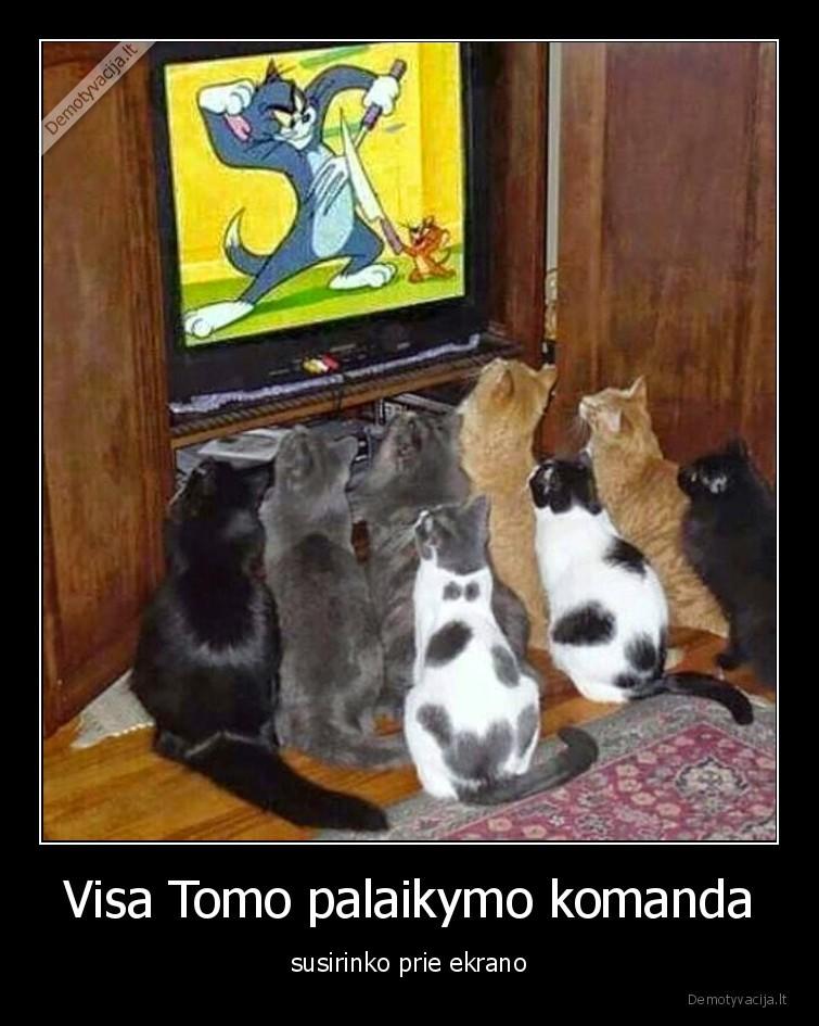 Visa Tomo palaikymo komanda susirinko prie ekrano