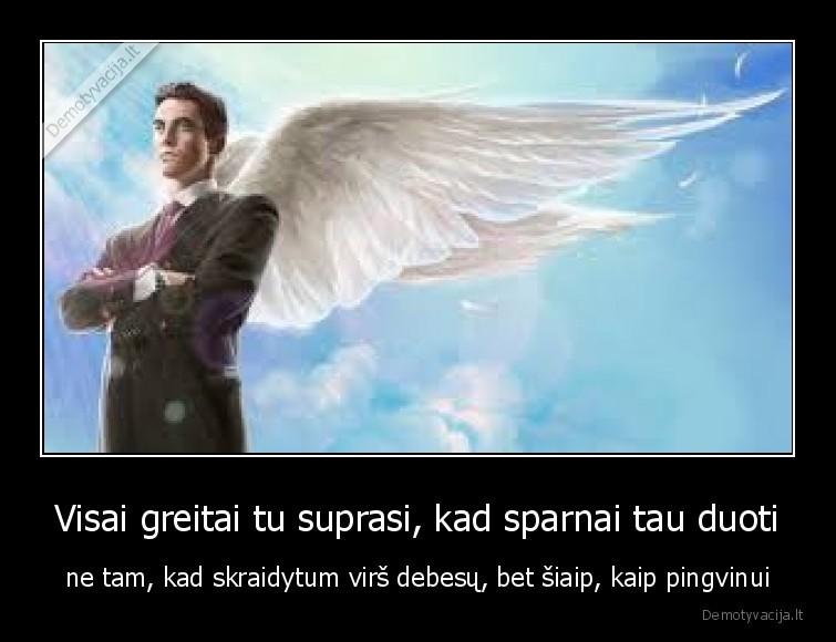 Visai greitai tu suprasi kad sparnai tau duoti ne tam kad skraidytum virs debesu bet siaip kaip pingvinui