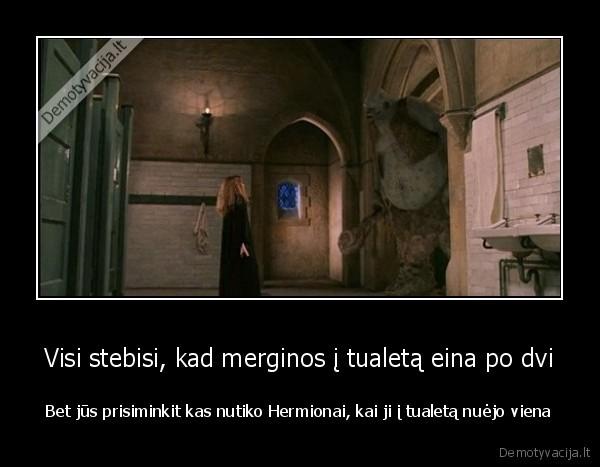 Visi stebisi kad merginos i tualeta eina po dvi Bet jus prisiminkit kas nutiko Hermionai kai ji i tualeta nuejo viena