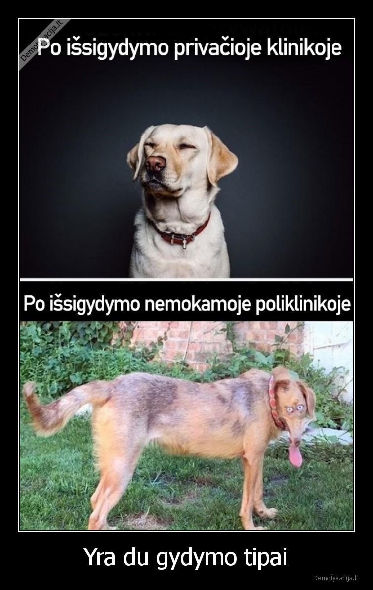 Yra du gydymo tipai