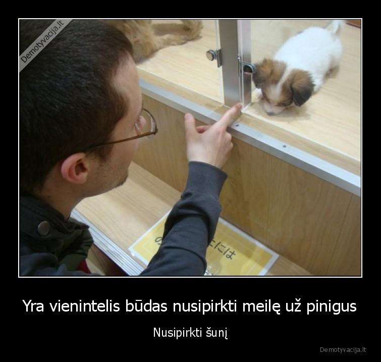Yra vienintelis budas nusipirkti meile uz pinigus Nusipirkti suni