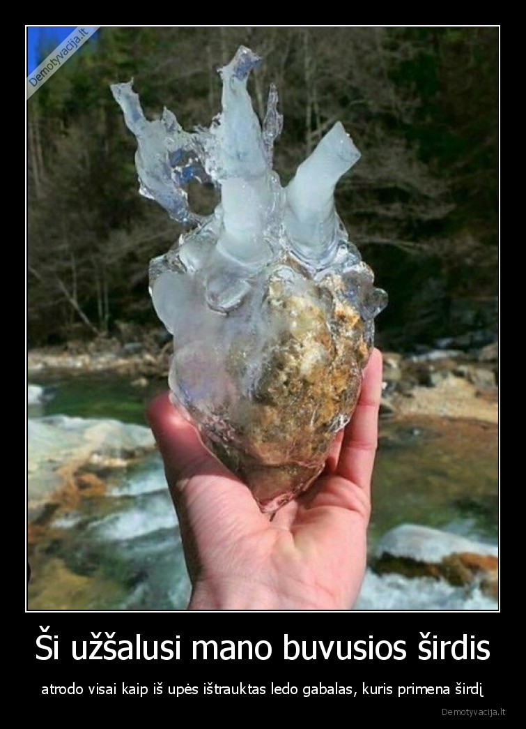 Si uzsalusi mano buvusios sirdis atrodo visai kaip is upes istrauktas ledo gabalas kuris primena sirdi