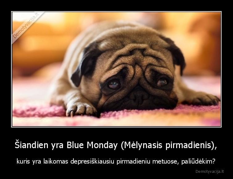 Siandien yra Blue Monday Melynasis pirmadienis kuris yra laikomas depresiskiausiu pirmadieniu metuose paliudekim