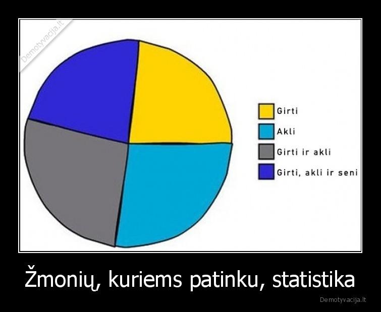 Zmoniu kuriems patinku statistika