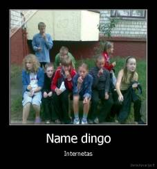 Name dingo - Internetas
